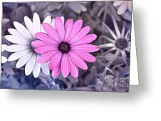 Flower15 Greeting Card