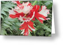 Flowerbird Zen Fancy  Greeting Card