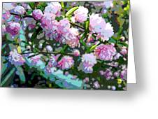 Flowering Almond Greeting Card