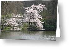Flowering Tree At The Pond Greeting Card