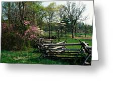 Flowering Trees In Bloom Along Fence Greeting Card