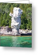 Flowerpot Island - Detail Greeting Card