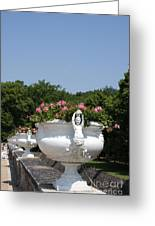 Flowerpots In A Row - Chateau Chenonceau Greeting Card