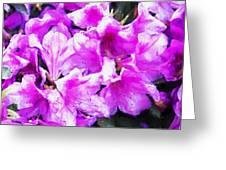 Flowers 2078 Oil Hp Greeting Card