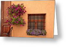 Flowers And A Window Greeting Card