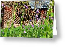 Flowers And Barn Greeting Card