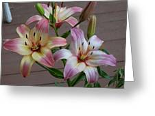 Flowers And Buds Greeting Card