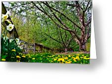 Flowers And Fence Greeting Card