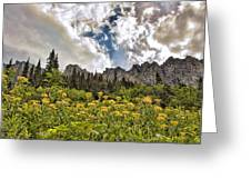 Flowers And Mountains And Sky...oh My Greeting Card