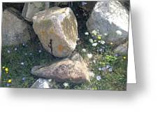 Flowers And Rocks Greeting Card