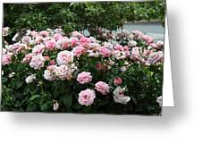 Flowers - Arlington National Cemetery - 01131 Greeting Card