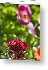 Flowers At Dallas Arboretum V14 Greeting Card