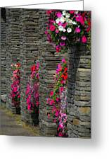 Flowers At Liscannor Rock Shop Greeting Card