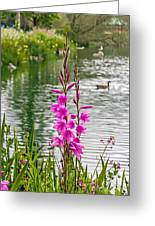 Flowers At The Lake Greeting Card