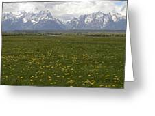 Flowers Before The Tetons Greeting Card