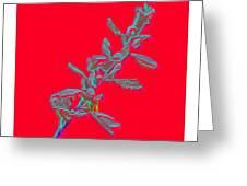 Flowers- Btb 2 Greeting Card