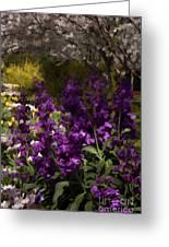 Flowers Dallas Arboretum V18 Greeting Card