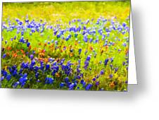 Flowers Field Background Greeting Card