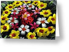 Flowers Floating Greeting Card