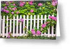 Flowers - Floral - White Picket Fence Greeting Card