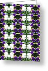 Flowers From Cherryhill Nj America White  Purple Combination Graphically Enhanced Innovative Pattern Greeting Card