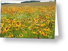 Flowers Gone Wild Greeting Card