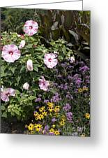 Flowers In A Garden Greeting Card