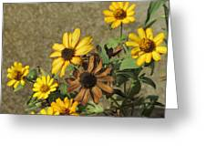 Flowers In Fall 1 Greeting Card