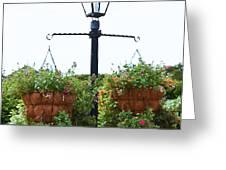 Flowers In Garden 4 Greeting Card