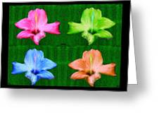 Flowers In Ireland Greeting Card