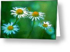 Flowers In Sunlight Greeting Card