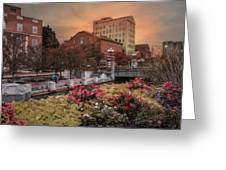 Flowers In The City Greeting Card