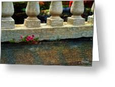 Flowers In The Cracks Greeting Card by Dan Quam