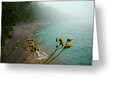Flowers In The Fog Greeting Card