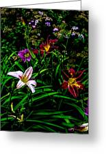 Flowers In The Garden 2 Greeting Card