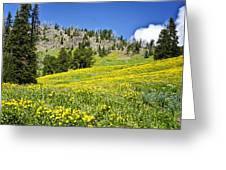 Flowers In The Park Greeting Card