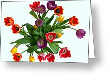 Flowers  Just  For  You Greeting Card