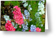 Flowers Of Pink And Blue Greeting Card