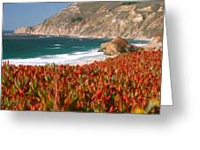 Flowers On The Coast, Big Sur Greeting Card