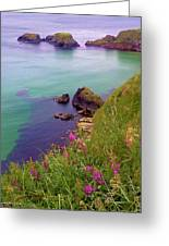 Flowers On The Coast Greeting Card