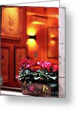 Flowers On The Ledge Greeting Card