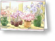 Flowers On The Windowsill Greeting Card by Julia Rowntree