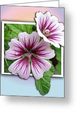 Flowers Out Of Bounds Greeting Card