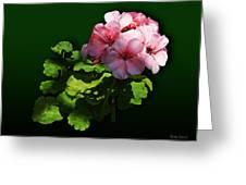 Flowers - Pale Pink Geranium Greeting Card