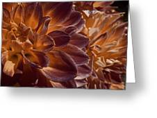 Flowers Should Also Turn Brown In Autumn Greeting Card
