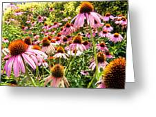 Flowers Standing Tall Greeting Card