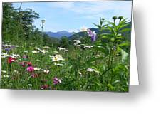 Flowers View Of The Mountains Greeting Card