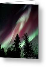 Flowing Colours Greeting Card