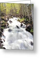 Flowing Fast Greeting Card