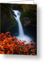 Flowing Into Fall Greeting Card